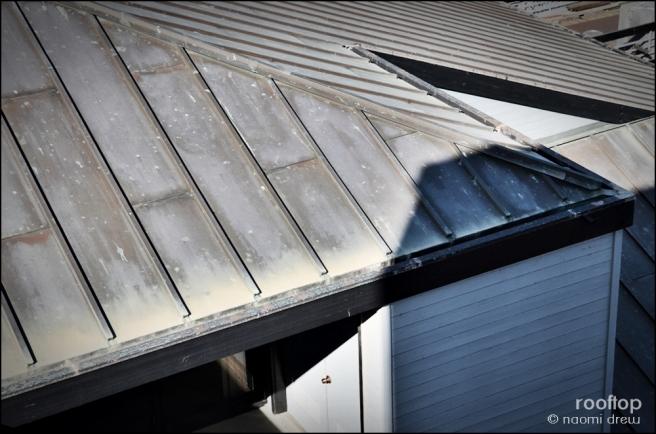 rooftopNMD_3270-20130309-082828