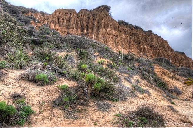 Cliffs Above El Matador State Beach