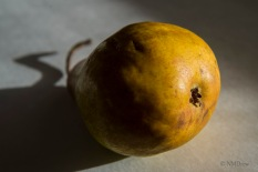 Pears (11 of 12)