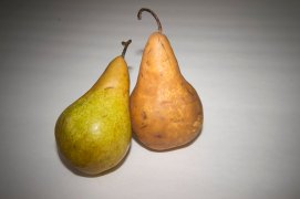 Pears, MagMod, Colored Filters (4 of 7)
