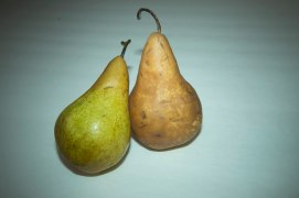 Pears, MagMod, Colored Filters (5 of 7)