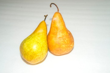 Pears, MagMod, Colored Filters (7 of 7)