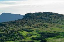A View Southward