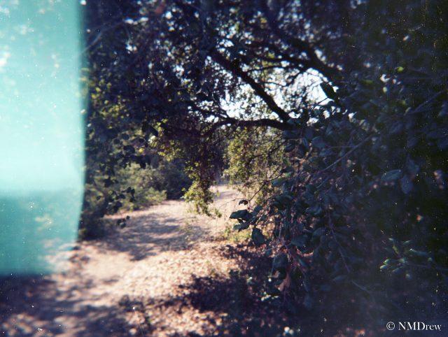 Trail a la Lomo - Original