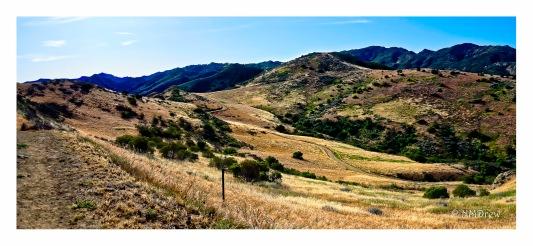 A View of Long Canyon