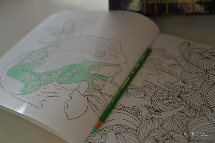 Me and My Coloring Book