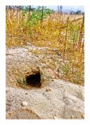 Badger Hole