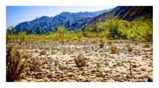 Santa Clara Riverbed in Summer