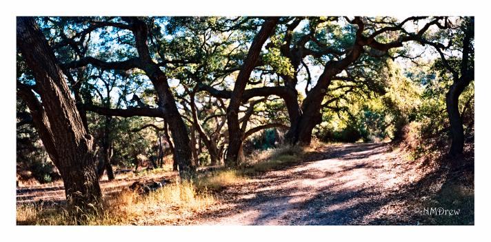 chumash-trail-1