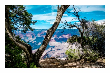 Views of the Grand Canyon (8 of 12)