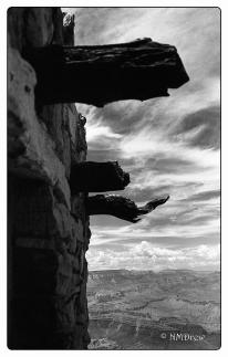 Lookout at Desert View Watchtower