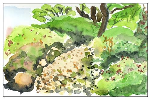 In the Garden - Direct Watercolor