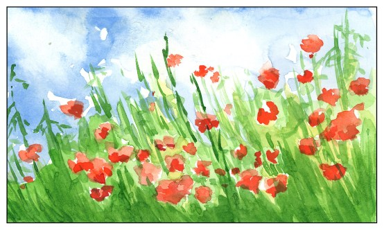 Red Poppies (5 of 5)