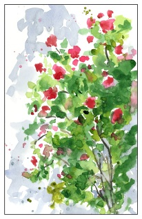 Roses in the Wind - Direct Watercolor