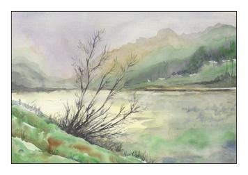 misty river - 1-20-2019