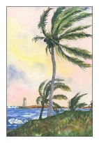 the palm tree, nassau - copy of painting by winslow homer