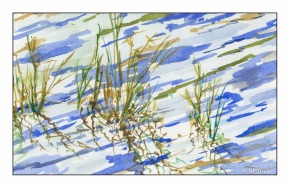 Grasses in Water